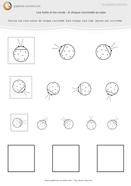 activité-graphisme-maternelle-petite-section-traits-et-ronds-cases-coccinelles