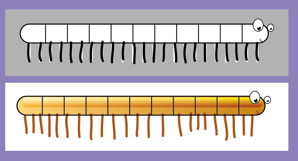 graphisme-maternelle-petite-section-latelier-lignes-verticales-mille-pattes