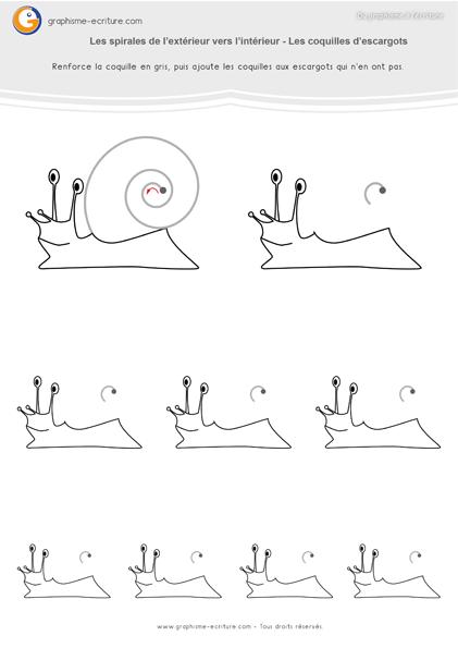 exercice-fiche-graphisme-écriture-moyenne-section-ms-les-spirales-intérieur-vers-extérieur-coquilles-d-escargots