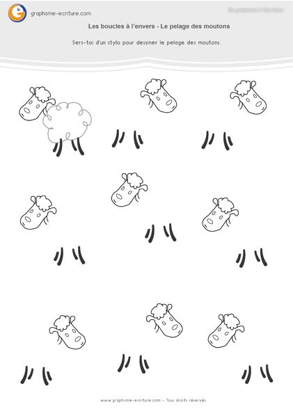 Graphisme GS Boucles à l'envers - Le pelage des moutons